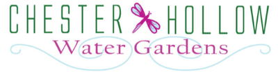 Chester Hollow Water Gardens Pond Retail Services